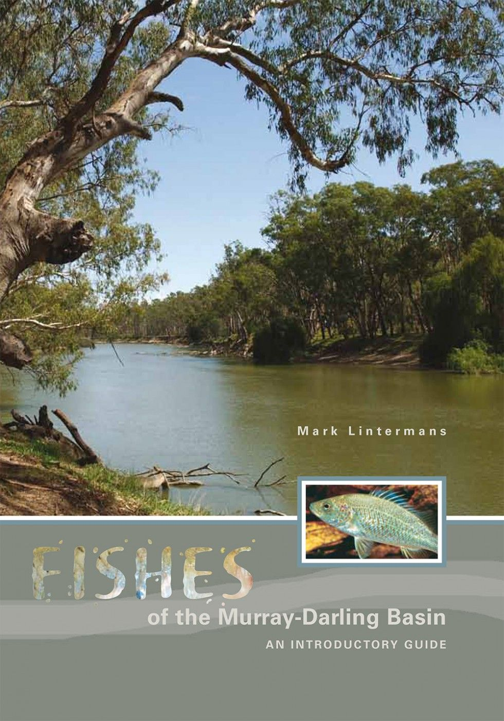 Fishes of the Murray-Darling Basin: an Introductory Guide