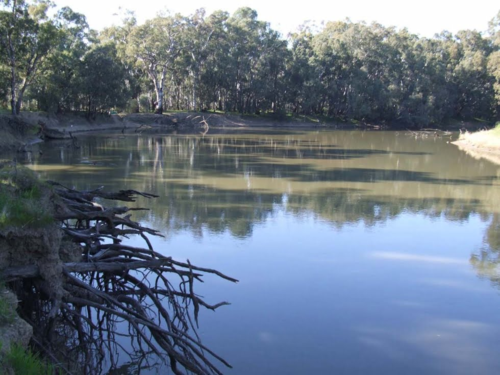 Habitat Management Areas 'toolkit' for the Murray-Darling Basin