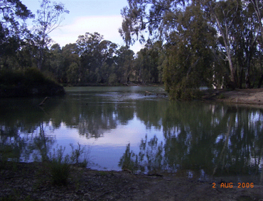 Mullaroo Creek originates at its divergence from the Murray River